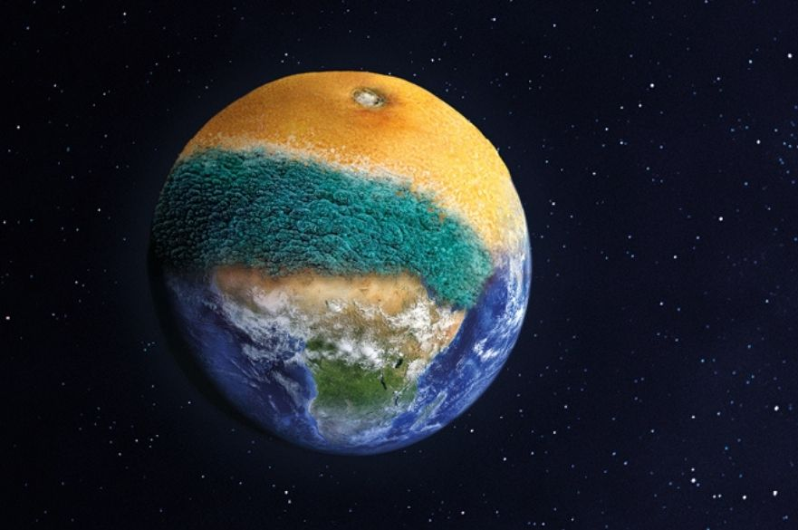 Planet earth with a mouldy orange